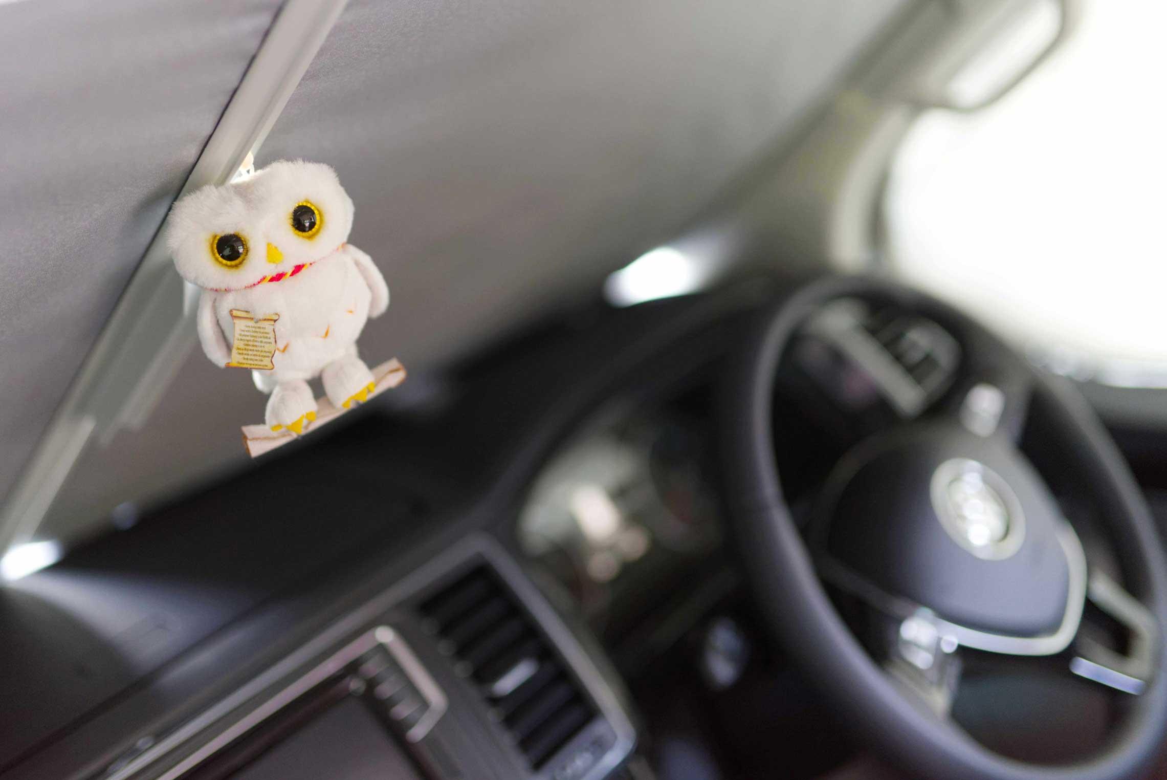 4Nadina Bee Linksfahren Intrior Owl BEE 8914small