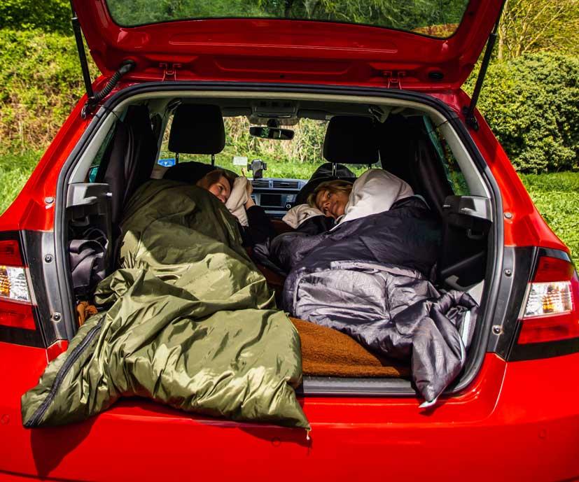 Road_Bunnies Campen im Auto